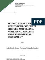 Phd_seismic Behaviour of Concret Bridges (Miranda Guedes)