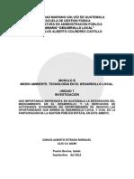 Tarea Unidad 7 Modulo b Desarrollo Local 2125-11-18289