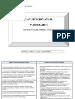 planificación anual QUINTO 2012
