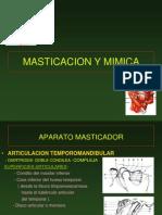 14- Masticacion y Mimica