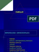 23- CUELLO-2