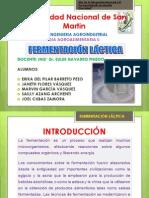 fermentacion lactica