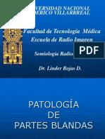 Curso Semiologia partes Blandas