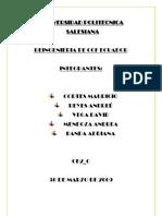 Reingenieria Final[1]