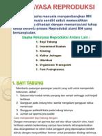 Rekaya Reproduksi PP