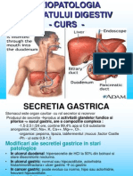Sistem Digestivt (1)