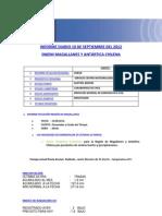 Informe Diario Onemi Magallanes 10.09