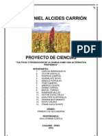 Proyecto Feria Ciencias Cultivos y Produccion de La Quinua