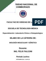 Silabo Bmg 2012 2013 Form Aprob