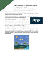 El Desequilibrio Entre La Fotosintesis y La Respiracion Es Causa Del Calentamiento Global
