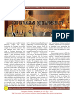 Coup in Pakistan Quite a Possibillity February 2012 Www.upscportal