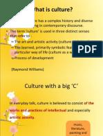 Presentation Culture or Culture Group 1