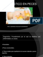 diagnóstico de peces