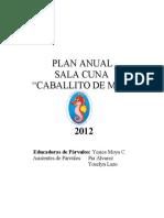 Plan Anual 2011 Caballito de Mar