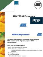 ARM7TDMI Processor(1)