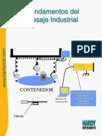 Fundamentos Del Pesaje Industrial