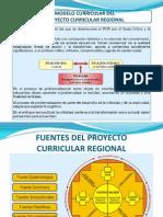 Proyecto Curricular Regional - Puno