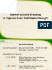 Marker-assisted breeding to improve grain yield under drought