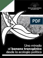 Una mirada al banano transgénico desde la ecología política (Alerta Verde 166)