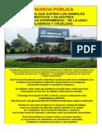 Negligencia en tenencia de animales domésticos  Facult. de Vetrinaria Zootecnia USAC.  Agosto 2012.