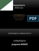 Presupuesto and s.a.s