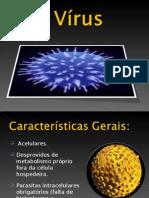 Características dos vírus-12ºB