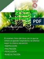 Ippa Del Sistema Respiratorio Ngcc