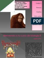 actividad 1 biología 2 (2012-2013) (1)