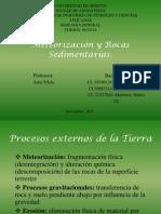 Expo Geologia Meteorizacion y Rocas Sedimentarias