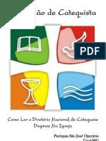 Apresentação didática do Diretório Nacional