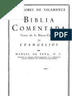 Profesores de Salamanca - Biblia Comentada 05 Evangelios