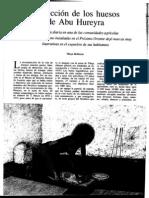 Molleson- La lección de los huesos de Abu Hureyra