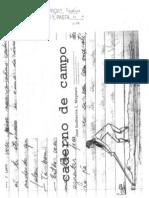 MAGNANI - O (Velho e Bom) Caderno de Campo.