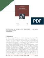APORTES_CULTURADESARROLLO_AMartinell