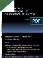 Competências e comportamentos  do empreendedor de sucesso