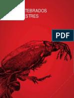 Vol i Invertebrados Terrestres
