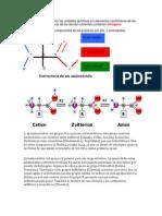 Examen Molecular