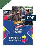 Plan Empleo. (Plan de Gobierno de Capriles Radonski)