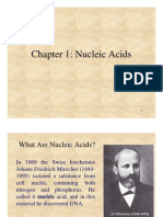 Chapter1 Nucleic Acid