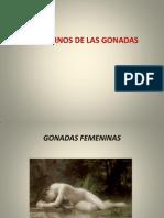 6 Fisiopatologia de Las Gonadas