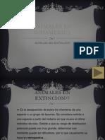 Animales en Sudamerica y Extincion