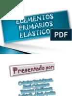 Elementos primarios elásticos.