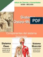 Sistema Oseomuscular
