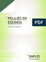 Pelajes en Equinos