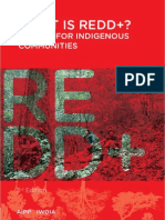 REDD+ Guide for Indigenous Communities (2012)