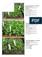 Spinach Trial 9-25-11