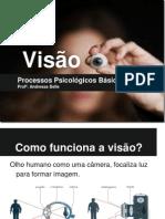 Processos Psicológicos - Visão (1)