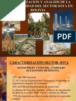 Analisis Del Sector SoYa en Bolivia