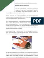 saopaulo-pratostipicos