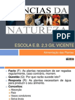 plantasalimentao-100202121602-phpapp02